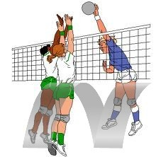 m l volley