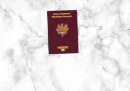 Passeport - 1 personne
